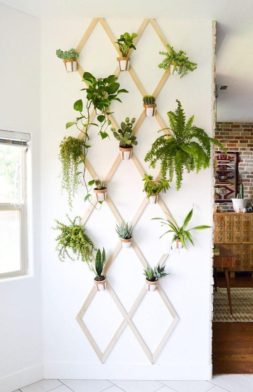 Meer groen in je room   kamernet blog